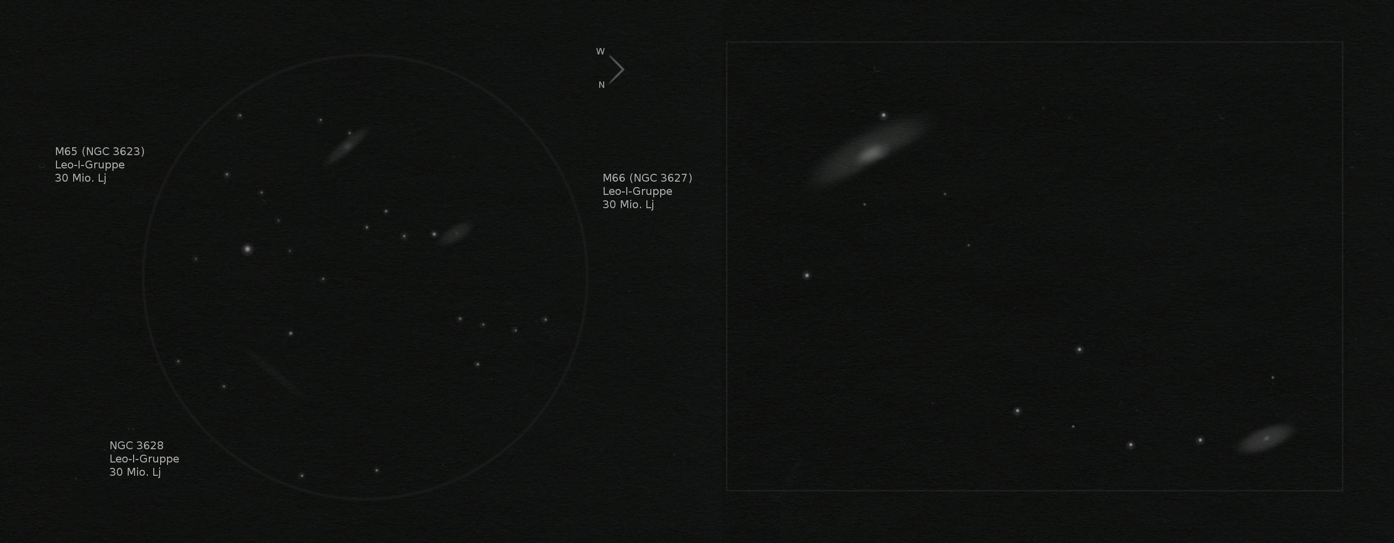 M66-Gruppe - Leo Triplet (Zeichnung)