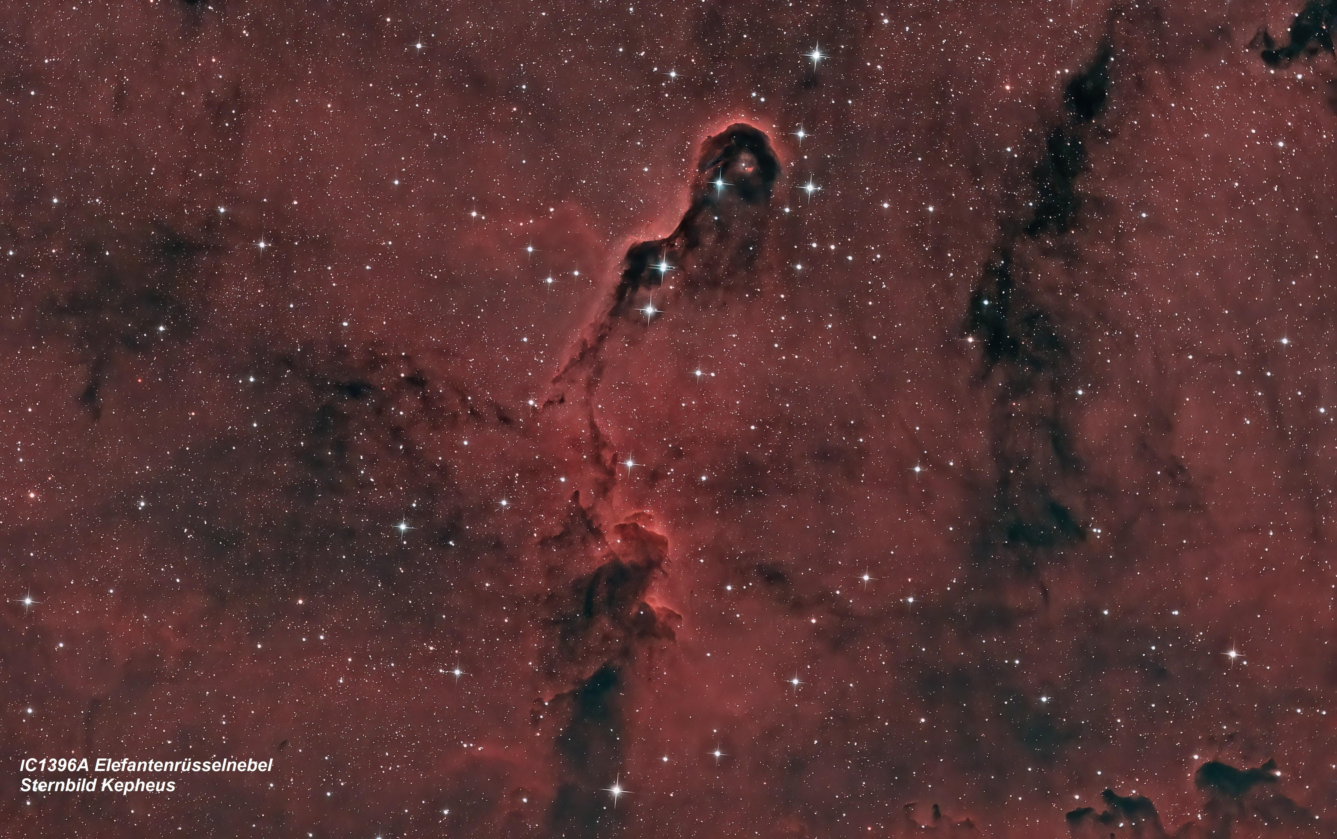IC 1396 Elefantenrüsselnebel