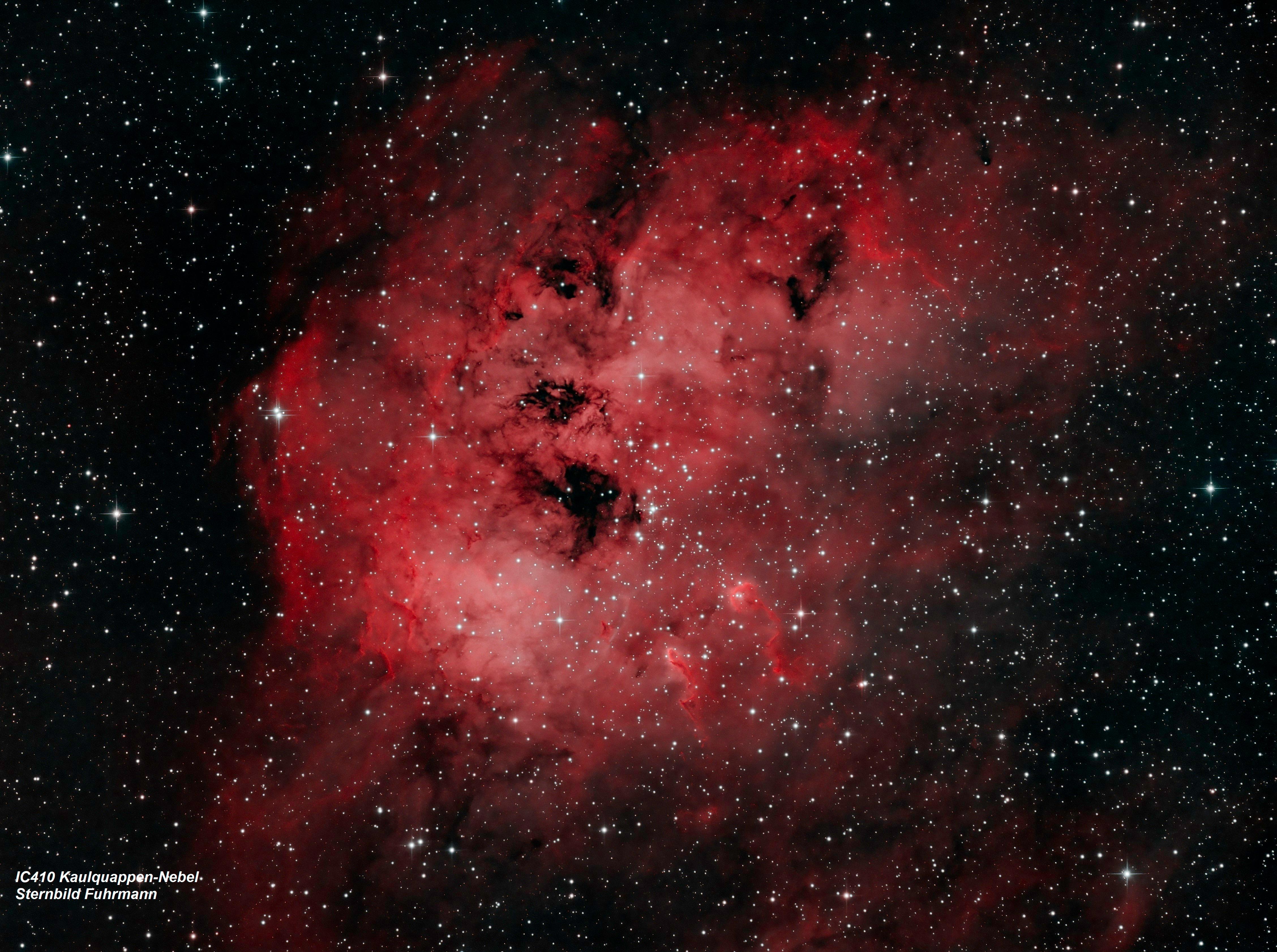 IC410 Kaulquappen Nebel