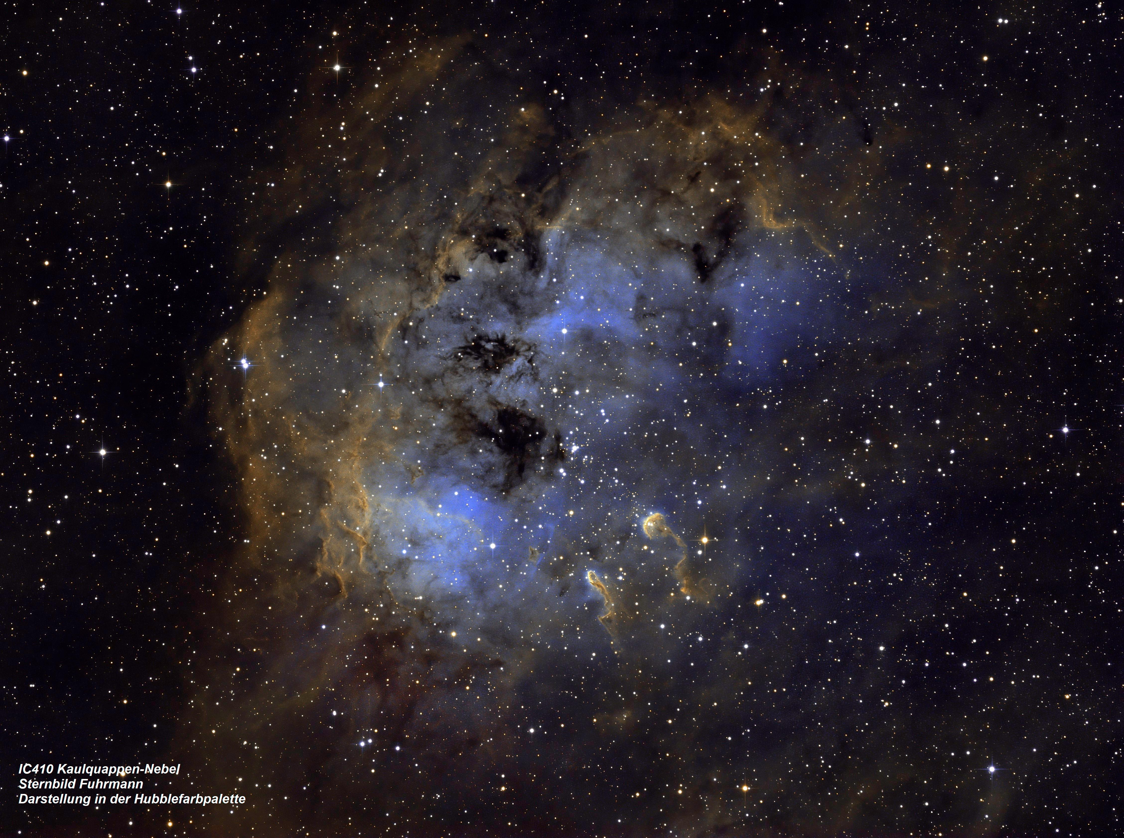 IC410 Kaulquappen Nebel (Hubble-Farbpalette)